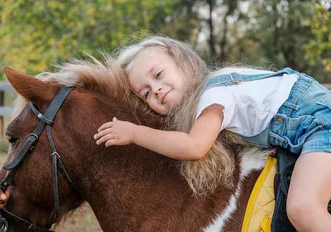 pony rides rentals